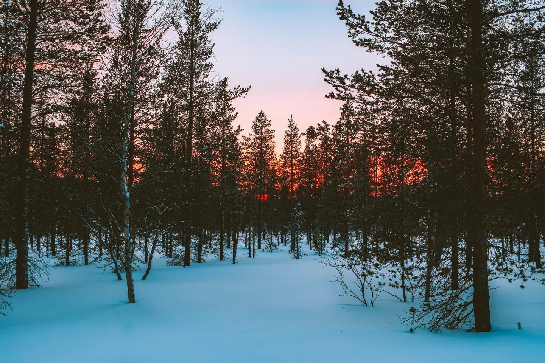 Winter Wonderland: Lapland, Finland